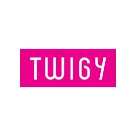 Twigy
